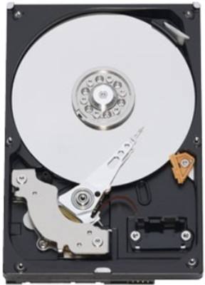 Seagate Barracuda 1 TB Desktop Internal Hard Drive (ST1000DM003)
